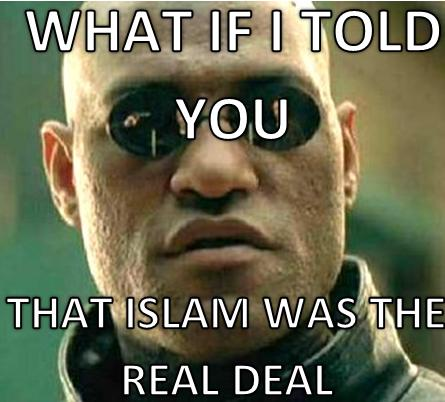 What if I told you that was Islam was the real deal?